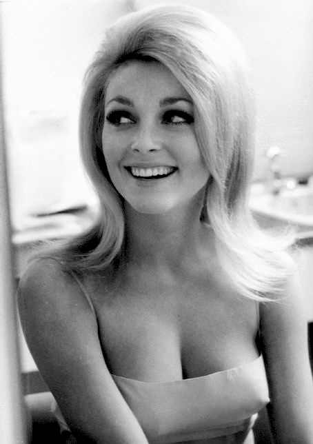 Sharon Tate - Photo Gallery